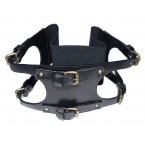 Miss Sixty Womens Waist-Band Belt